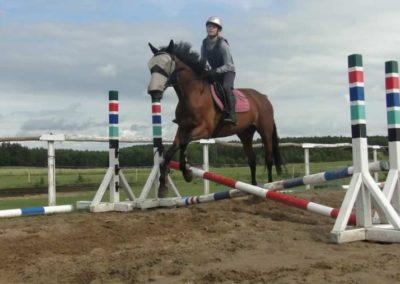 oboz-konie-2015-2-0203