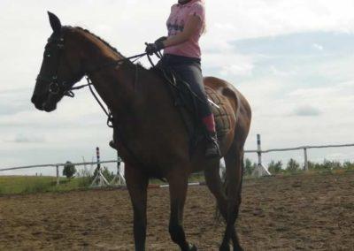 oboz-konie-2015-2-0207
