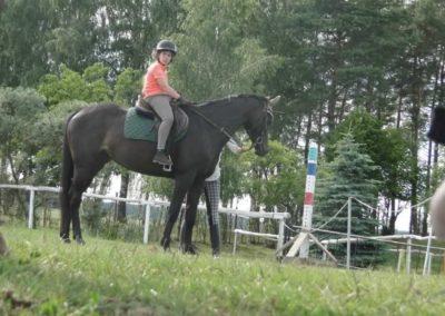 oboz-konie-2015-2-0209