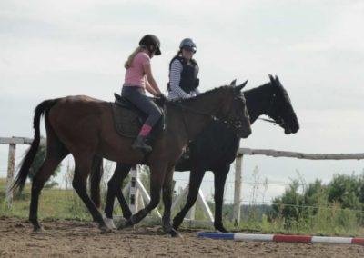 oboz-konie-2015-2-0210