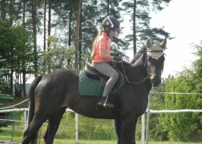 oboz-konie-2015-2-0213