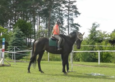 oboz-konie-2015-2-0214