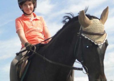 oboz-konie-2015-2-0215