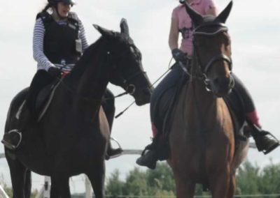 oboz-konie-2015-2-0217