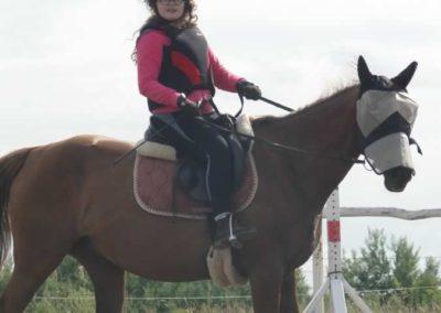 oboz-konie-2015-2-0218