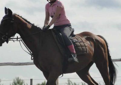 oboz-konie-2015-2-0221
