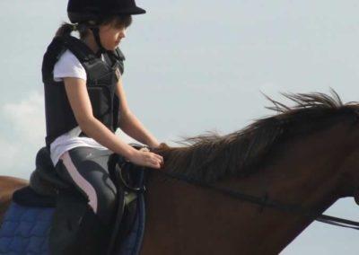 oboz-konie-2015-2-0225