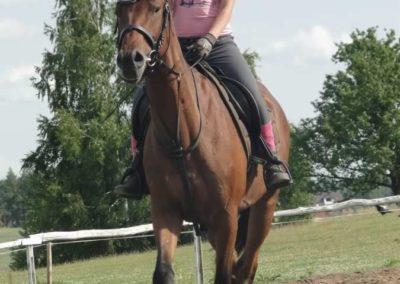 oboz-konie-2015-2-0226