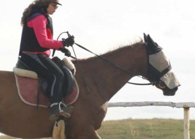 oboz-konie-2015-2-0228