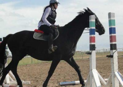 oboz-konie-2015-2-0230