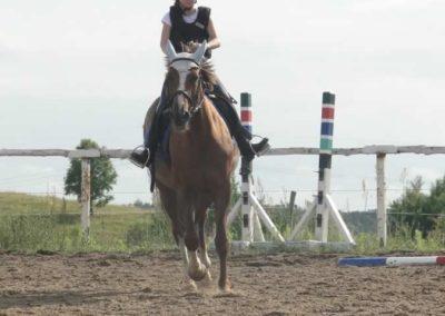 oboz-konie-2015-2-0235