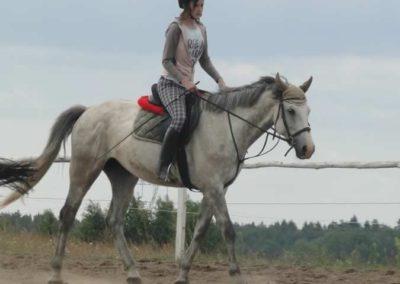 oboz-konie-2015-3-0005