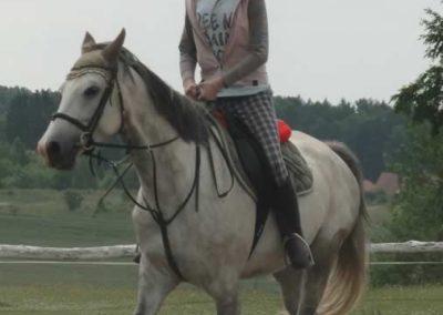 oboz-konie-2015-3-0013