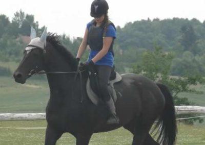 oboz-konie-2015-3-0014