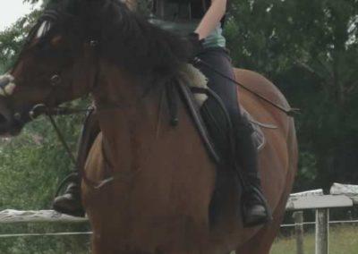 oboz-konie-2015-3-0016