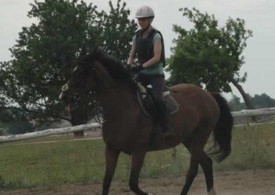 oboz-konie-2015-3-0019