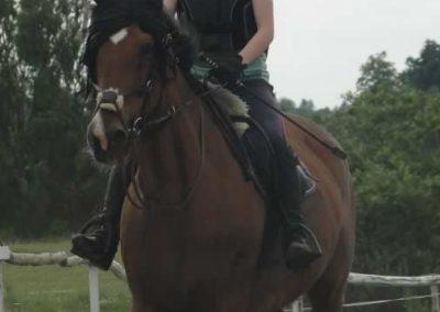 oboz-konie-2015-3-0021