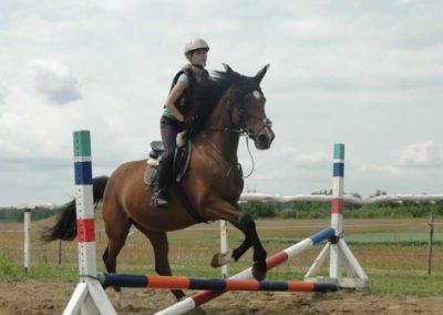 oboz-konie-2015-3-0028