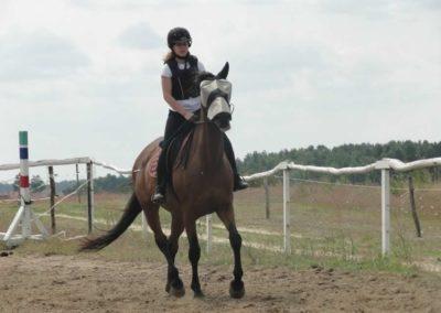 oboz-konie-2015-3-0030