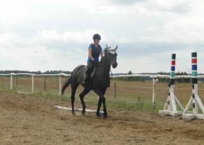 oboz-konie-2015-3-0031