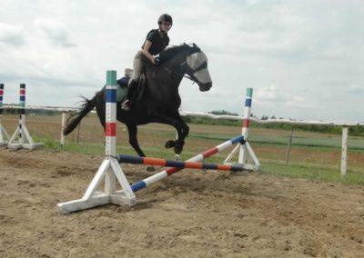 oboz-konie-2015-3-0032