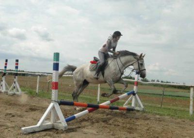 oboz-konie-2015-3-0033