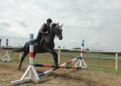oboz-konie-2015-3-0035
