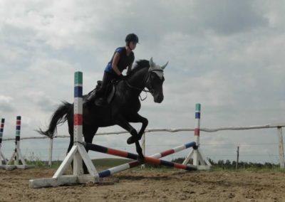 oboz-konie-2015-3-0036