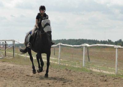 oboz-konie-2015-3-0042