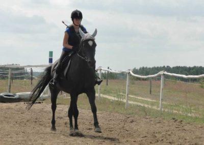 oboz-konie-2015-3-0044