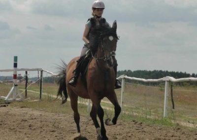 oboz-konie-2015-3-0045
