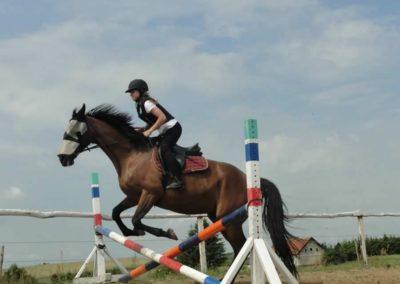 oboz-konie-2015-3-0051