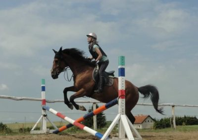 oboz-konie-2015-3-0052