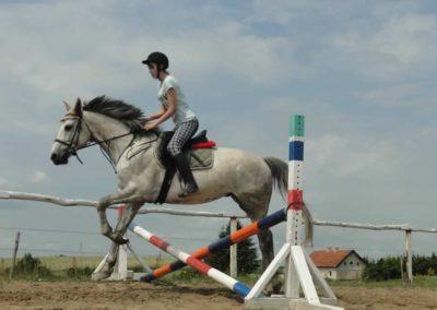 oboz-konie-2015-3-0053