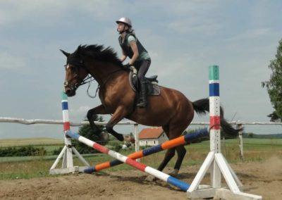 oboz-konie-2015-3-0054
