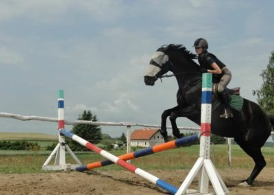 oboz-konie-2015-3-0057