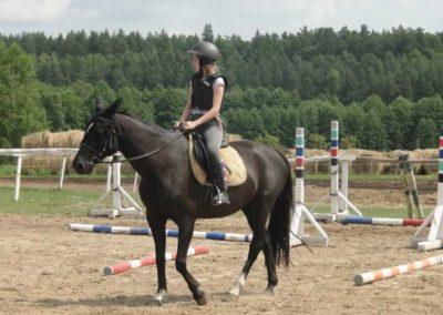oboz-konie-2015-3-0059