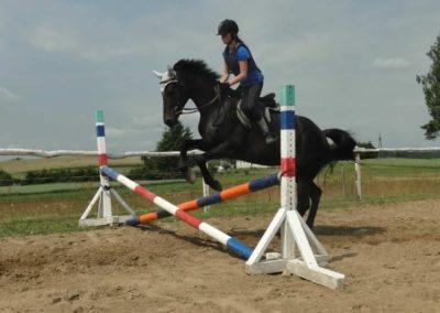 oboz-konie-2015-3-0069
