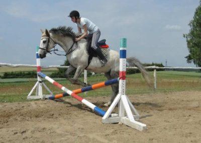 oboz-konie-2015-3-0073
