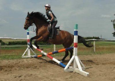 oboz-konie-2015-3-0075