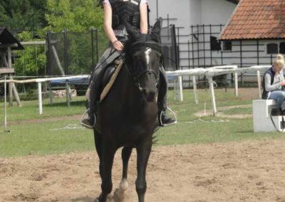 oboz-konie-2015-3-0078