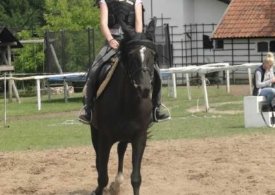 oboz-konie-2015-3-0079