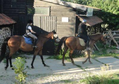 oboz-konie-2015-3-0082