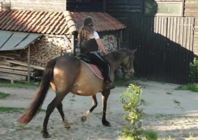 oboz-konie-2015-3-0083