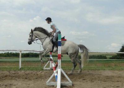 oboz-konie-2015-3-0091