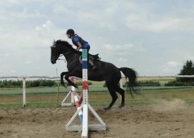 oboz-konie-2015-3-0094