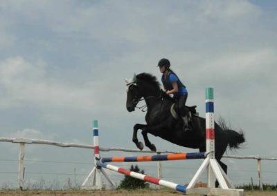 oboz-konie-2015-3-0108