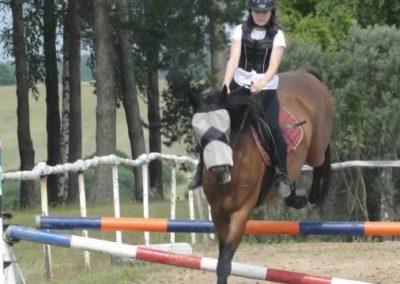 oboz-konie-2015-3-0110