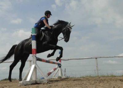 oboz-konie-2015-3-0127