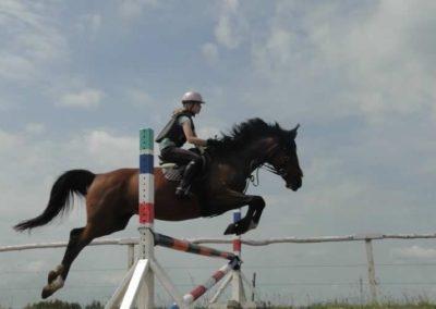 oboz-konie-2015-3-0129